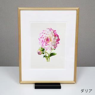 THE MOST BEAUTIFUL FLOWERS /Kenji Toma オリジナルプリント ウッドフレーム 全6種