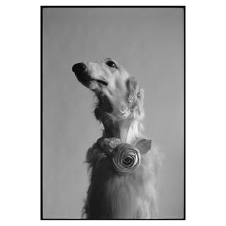 《Dog Portrait》ELLIOTT ERWITT Platinum Editions【プリント作品】