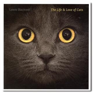 The Life and Love of Cats 大迫力の大判の猫写真集