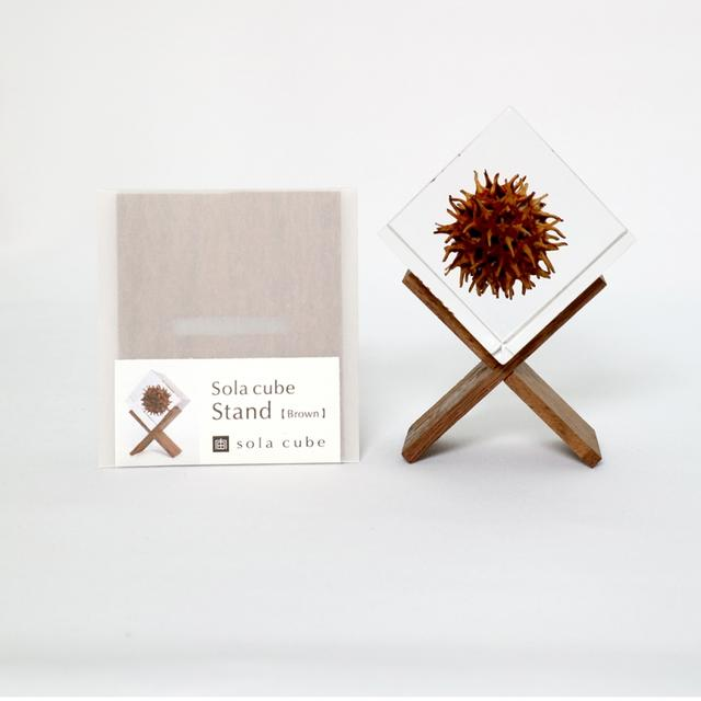sola cube stand (brown/white) ディスプレイ用スタンド Sola cube