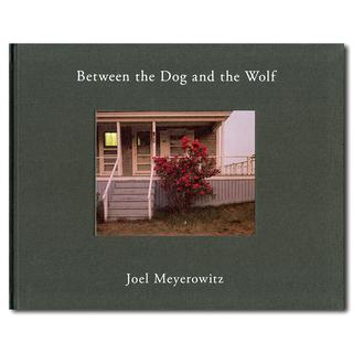 Between the Dog and the Wolf 2nd edition 表紙2種類
