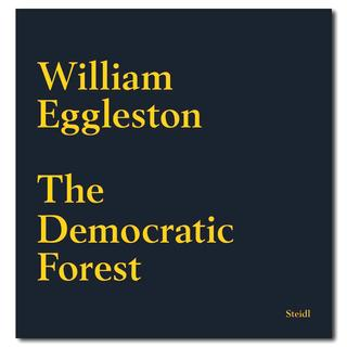 【40%OFF】The democratic forest